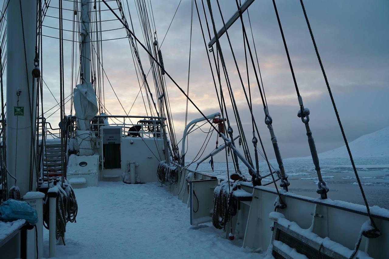 LETTERS FROM ... Lena von Goedeke in der Arktis 1
