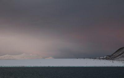 LETTERS FROM … Lena von Goedeke in der Arktis