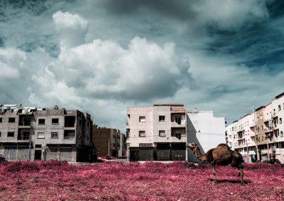 Zakaria Wakrim, Annexes Series, 2016