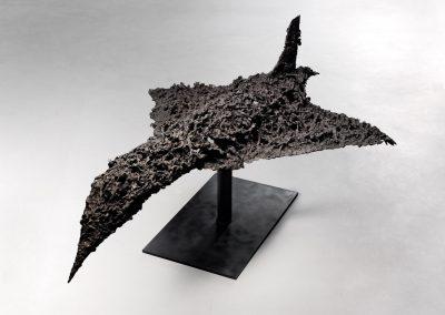 Ricard Larsson, Concorde