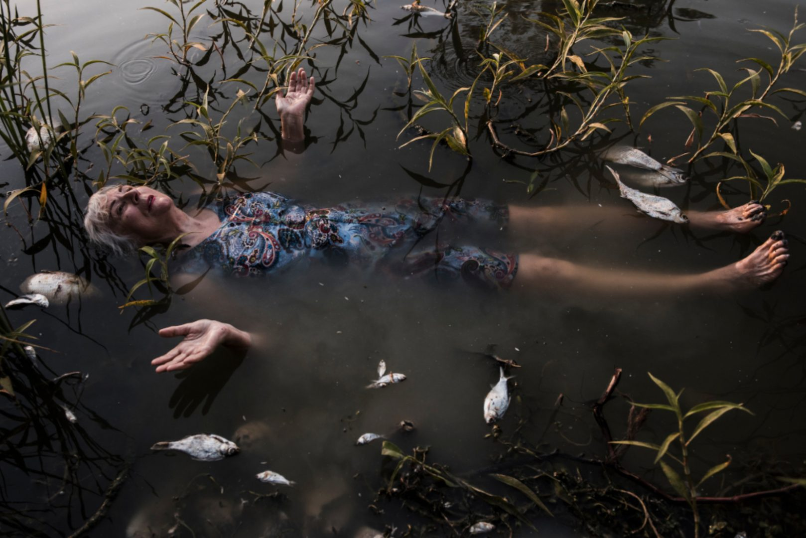 Photographic work of Australian artist Bonita Ely, responding to the mass fish die-off. | Menindee Fish Kill, January 2019, Artist: Bonita Ely; photographer: Melissa Williams-Brown